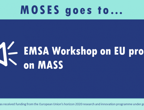 EMSA Workshop on EU projects on MASS